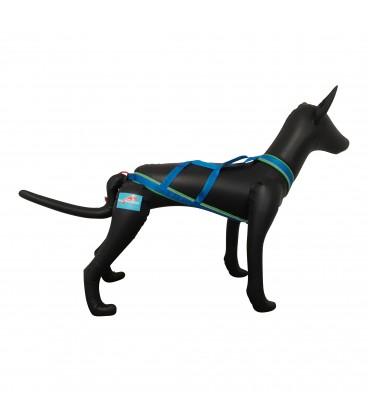 Inlandsis Faün - Mannequin chien
