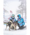 Polar Quest harness
